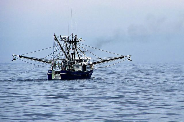 363 best images about shrimpin on pinterest fishing for Commercial fishing boats for sale gulf coast