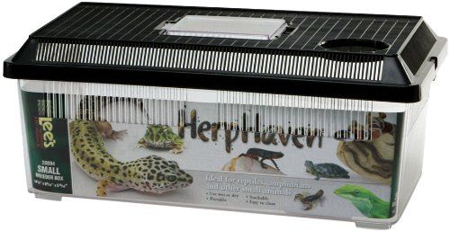 Lee's Herp Haven Breeder Box, Small Lee http://www.amazon.com/dp/B000YKBKG4/ref=cm_sw_r_pi_dp_wnt-wb1WBD36R