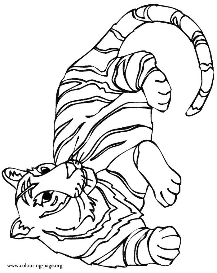 what about to color this awesome picture of a wild tiger resting just use your imagination and enjoy it - Coloring Pages Tigers Print