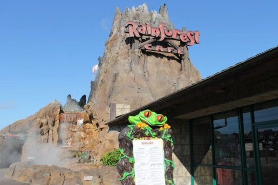 Rainforest Café Retail Village in Disney Springs - Couponing to Disney