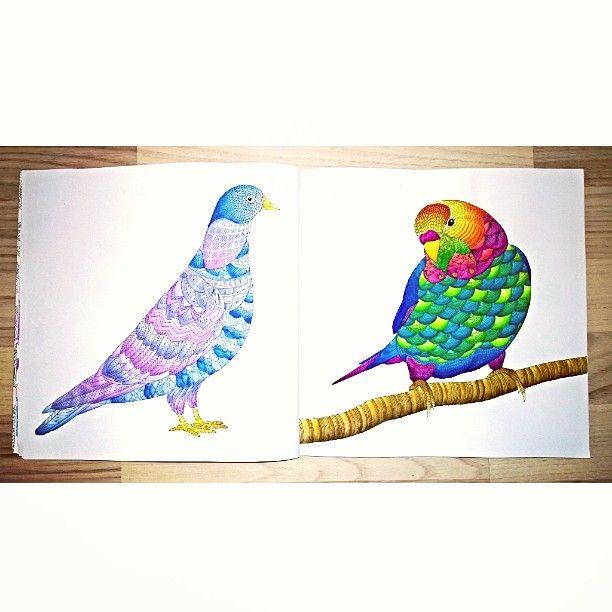 Animal Kingdom, Derwent Watercolour, Derwent Inktense #animalkingdom #milliemarotta #coloringforadults #coloringbooks #królestwozwierząt #kolorowaniedladorosłych