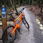 Haldon Forest Park - 1 South West Cycling Project | 1 South West Cycling Project