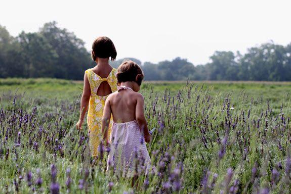 Lavender Farm East End Long Island