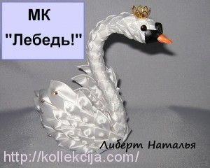 taśmy Swan