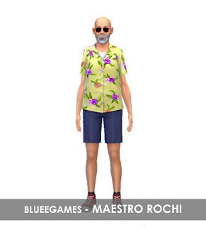 Dragon Ball Z | Maestro Rochi | SIM - BlueeGames
