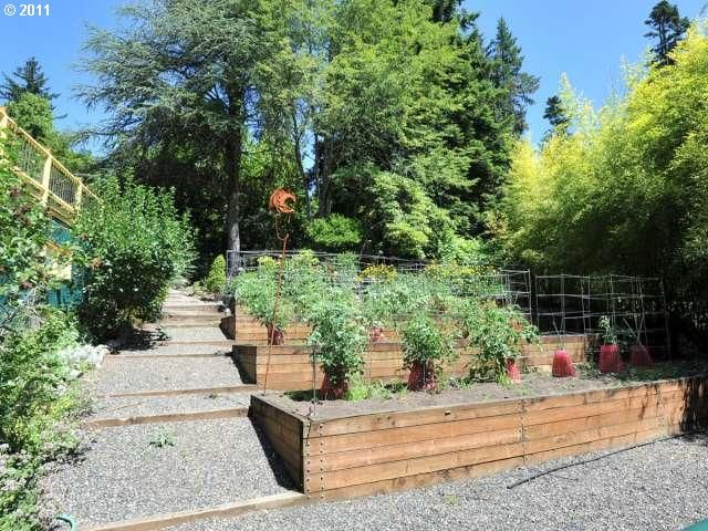 Hillside gardening :)