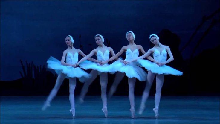 Danza de los pequeños cisnes - El lago de los cisnes.