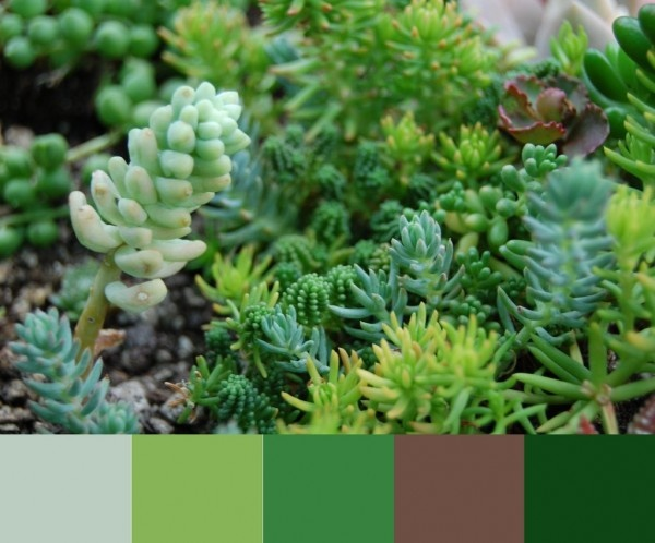 Create a color pallet with GIMP