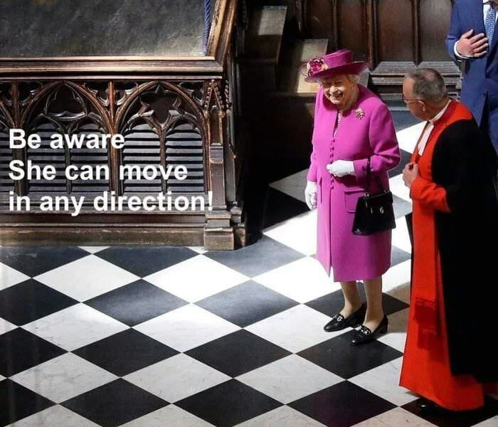 A Moment Of Tension Queen Elizabeth Memes Chess Queen Stupid Jokes