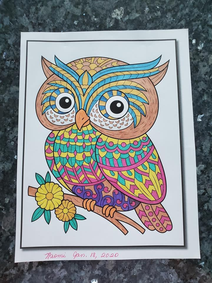 Adorable Owls by Jade Summer Colored by Naomi Custodio # ...
