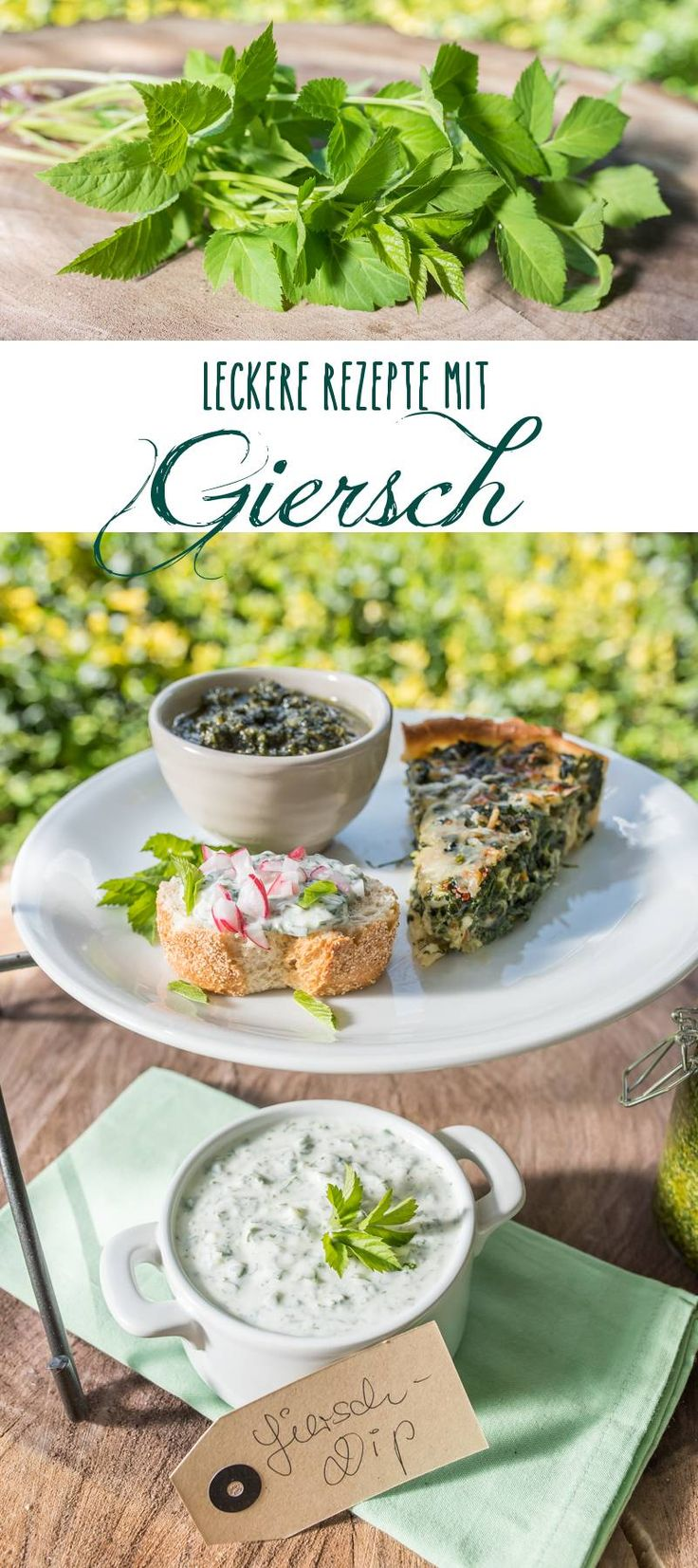 Three delicious recipes with yaw as a healthy utilization of the wild herbs in the morning …  – Dips/Pestos/ Aufstriche