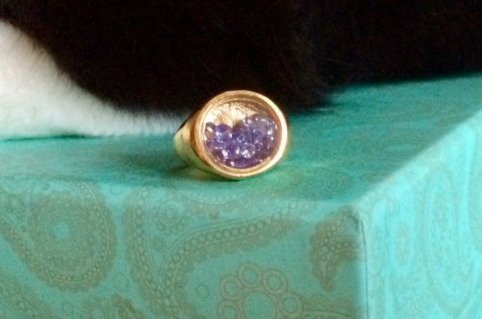 BJØRG Treasured Dreams Tanzanite Shaker Ring – Janet Carr @