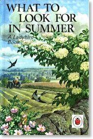 Ladybird Books- Summer