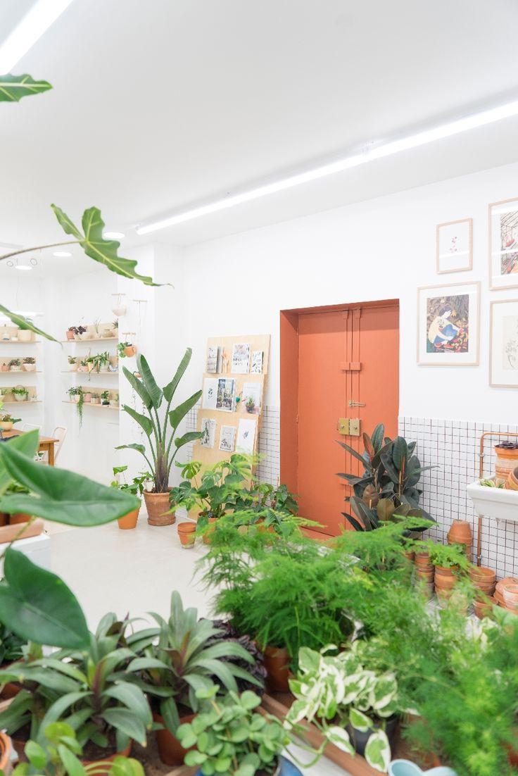JOELIX.com | Leaf plant shop in Paris #urbanjunglebloggers #plantshop #paris