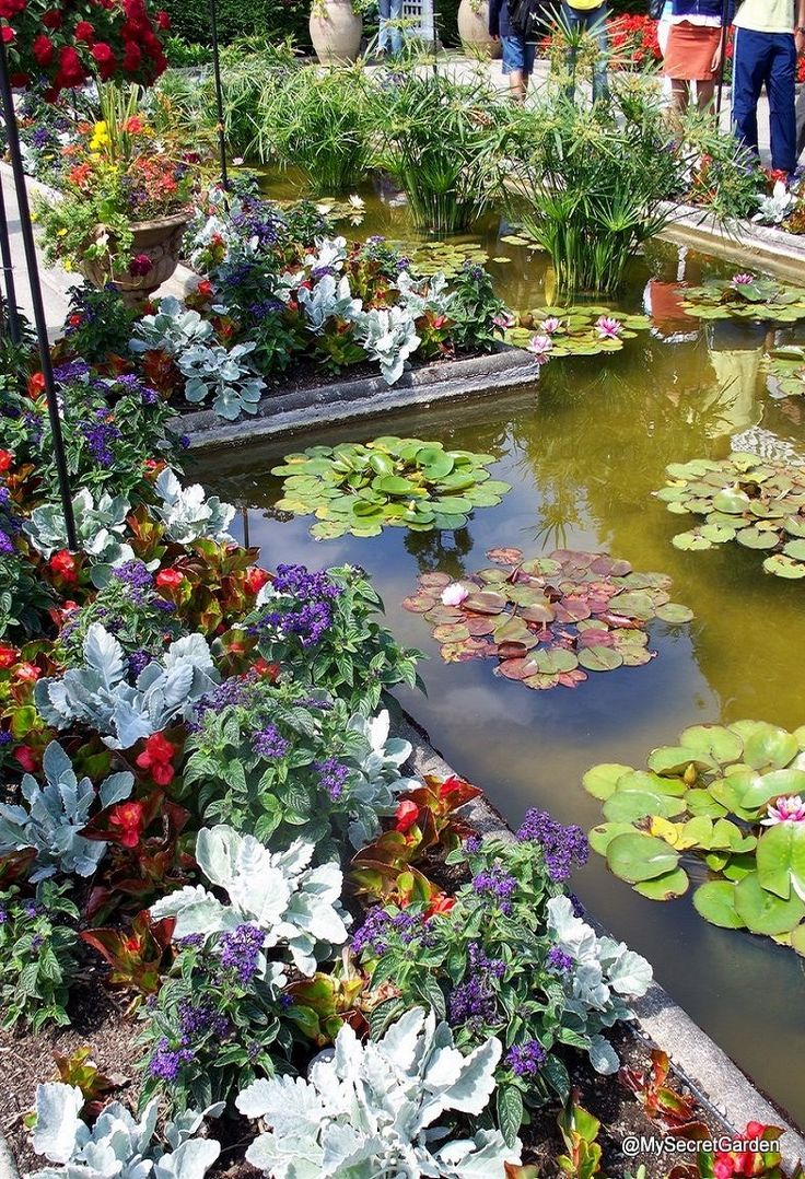 Lily pond surrounded by flower beds with spectacular for Garden pond unlimited