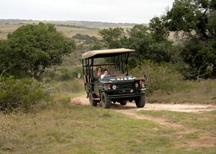 Hlosi Game Lodge, Amakhala Reserve, Eastern Cape