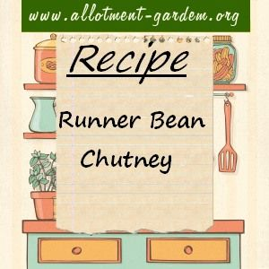 Recipe for Runner Bean Chutney. One way of dealing with the runner bean glut! Serve with cold meats or cheese. Allow to mature for at least 6 to 8 weeks.