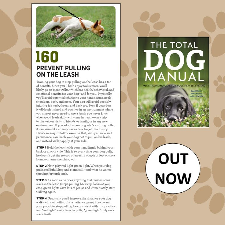 Taken from The Total Dog Manual here's a really handy tip for dealing with a dog that pulls on the lead; for more helpful tips head to http://www.quillerpublishing.com/…/the-total-dog-manual.html