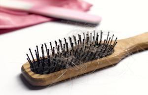 10 remedios contra plagas, hongos y plantas desnutridas: Aleja los roedores de tus vegetales