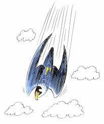 Image result for faucon pelerin vitesse