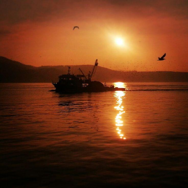 Sarıyer sahil /2014