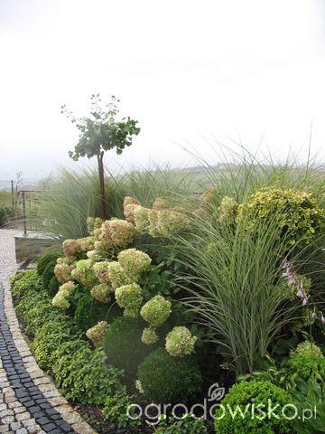 Ogród wśród pól i wiatrów