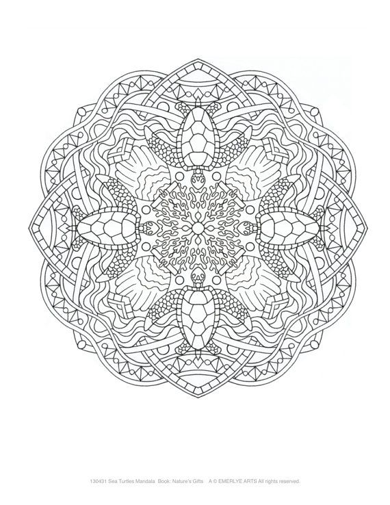 Best 25 Mandala turtle ideas on Pinterest Adult