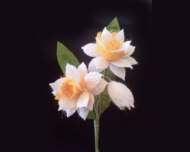 Bridesman boutonniere (white daffodil)