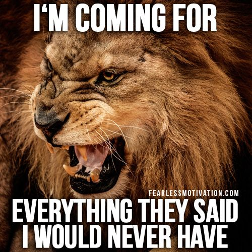 Lion Quotes And Sayings 43 best LION QU...