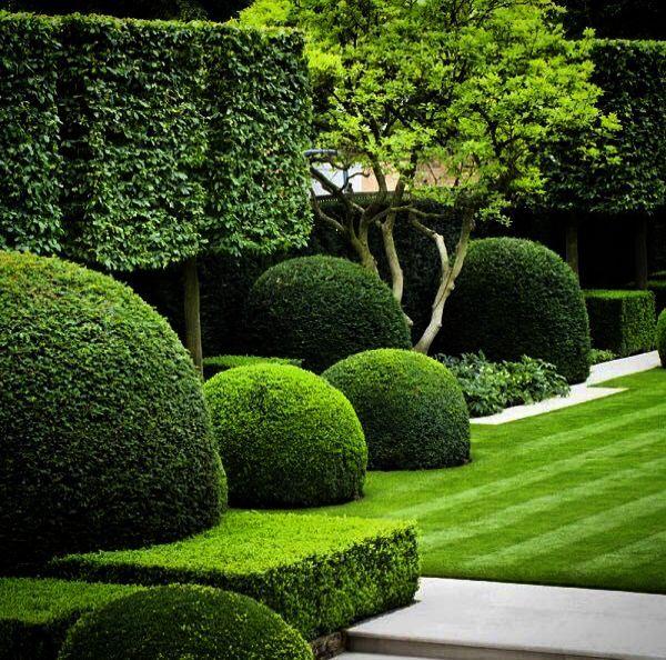 Tiny Space Garden Ideas Sgd Student Rebeca Successful Garden Design Garden Design Small Space Gardening Design Course