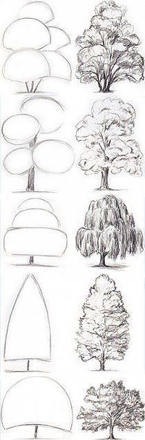 Hier könnt ihr euch an Bäumen üben. Viel Spaß und viel Erfolg. Bäume zeichnen.