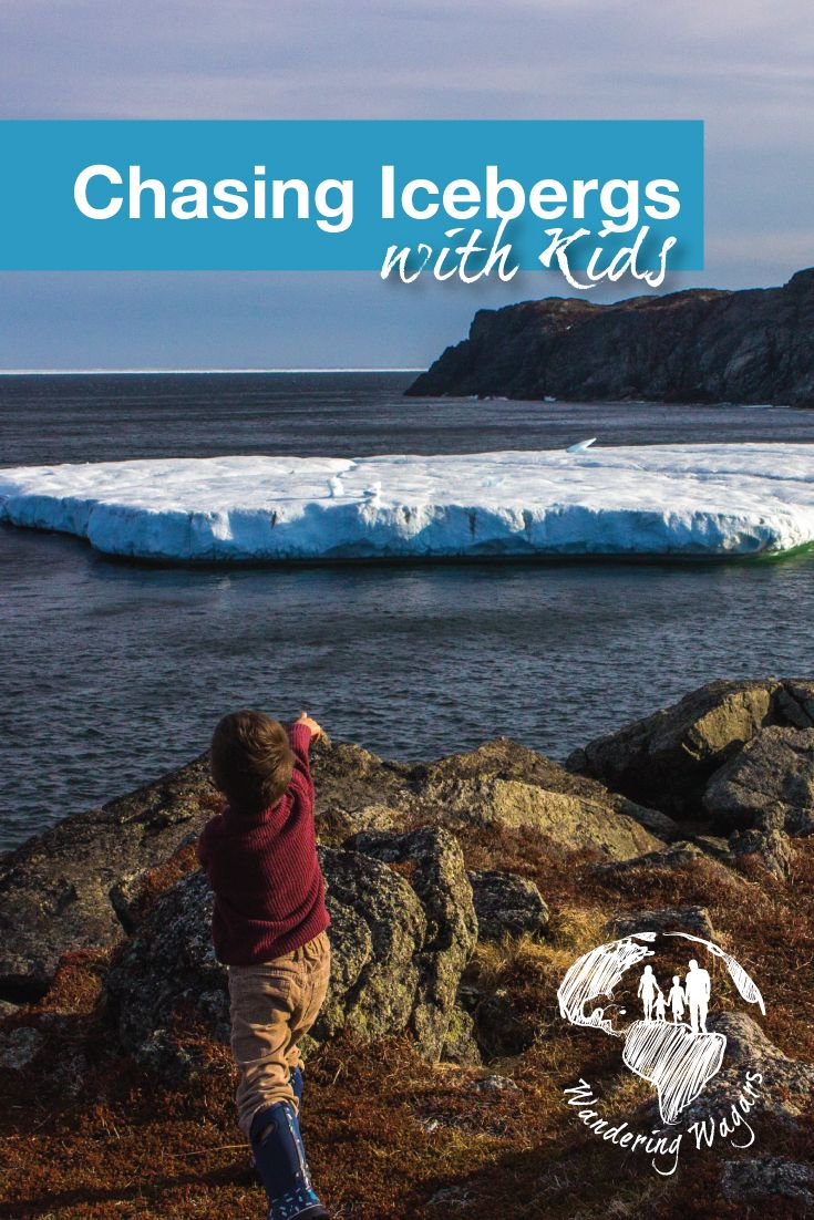 St. Anthony in Newfoundland, Canada is part of Iceberg Alley. This area is a prime  iceberg viewing destination. Icebergs can be spotted from late spring to early summer (May-July). St. Anthony is a great place to bring kids for a quick holiday.