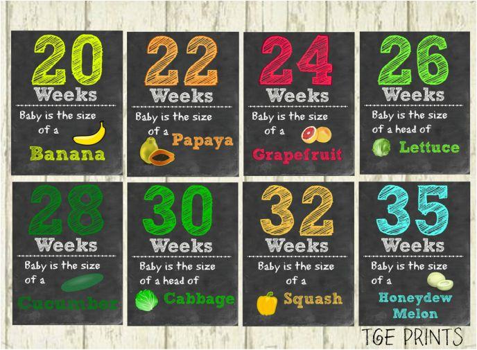 Printable Weekly pregnancy/fruits chalkboard signs – PREGNANCY TRACKER