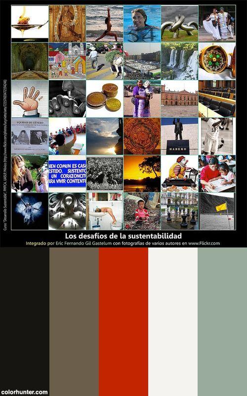 Los Desafíos De La Sustentabilidad - Efgg, Uaslp, México, 2007 Color Scheme