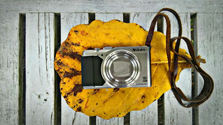 Pocket Nikon Coolpix S9900 | copyright 2017