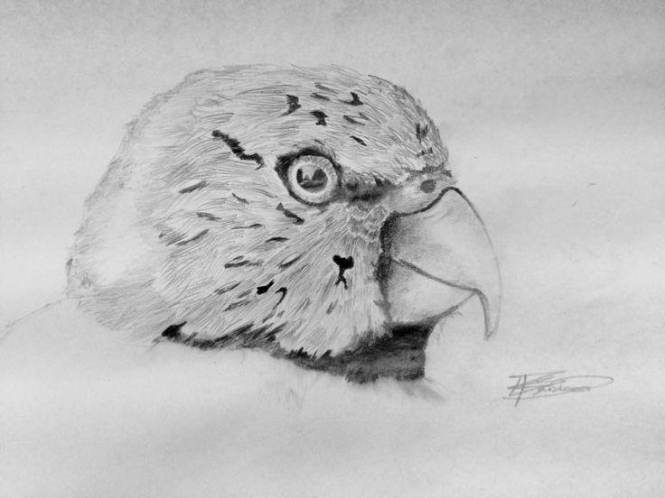 Kent Belisario Year 10 Drawing
