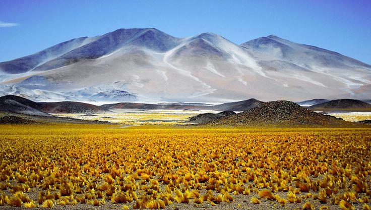 Ruta De Los Seismiles Catamarca Argentina Ruta 40