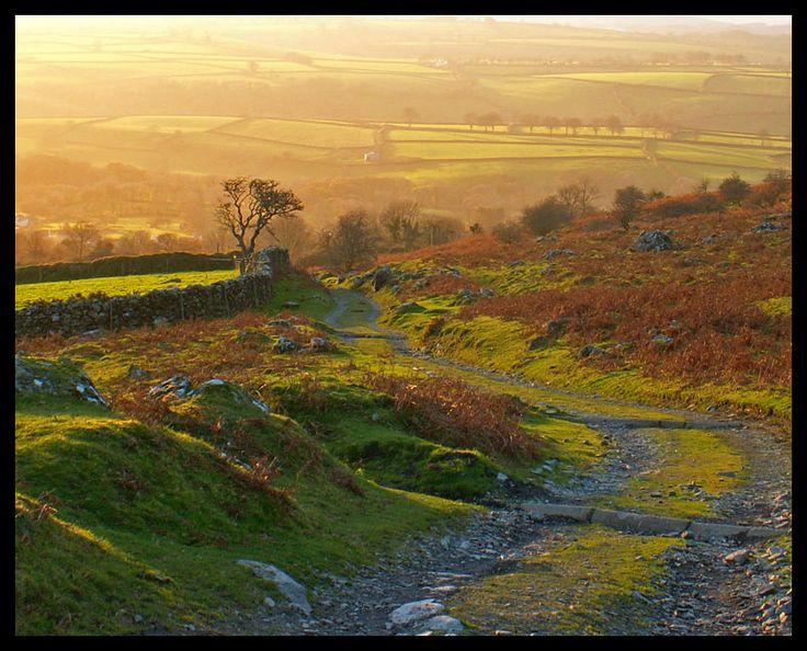 Dartmoor Evening Light by jadesgran. Devon, UK