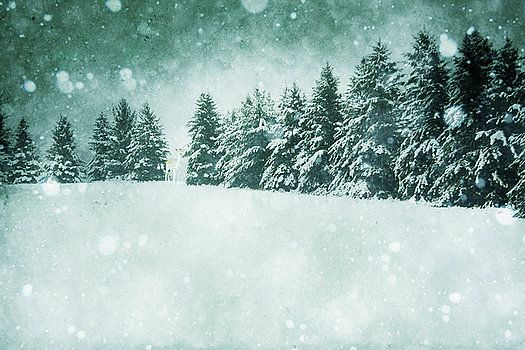 Let it snow  by Angela King-Jones