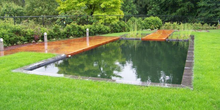 Moderne zwemvijver met apart filtergedeelte constructie for Constructie piscine