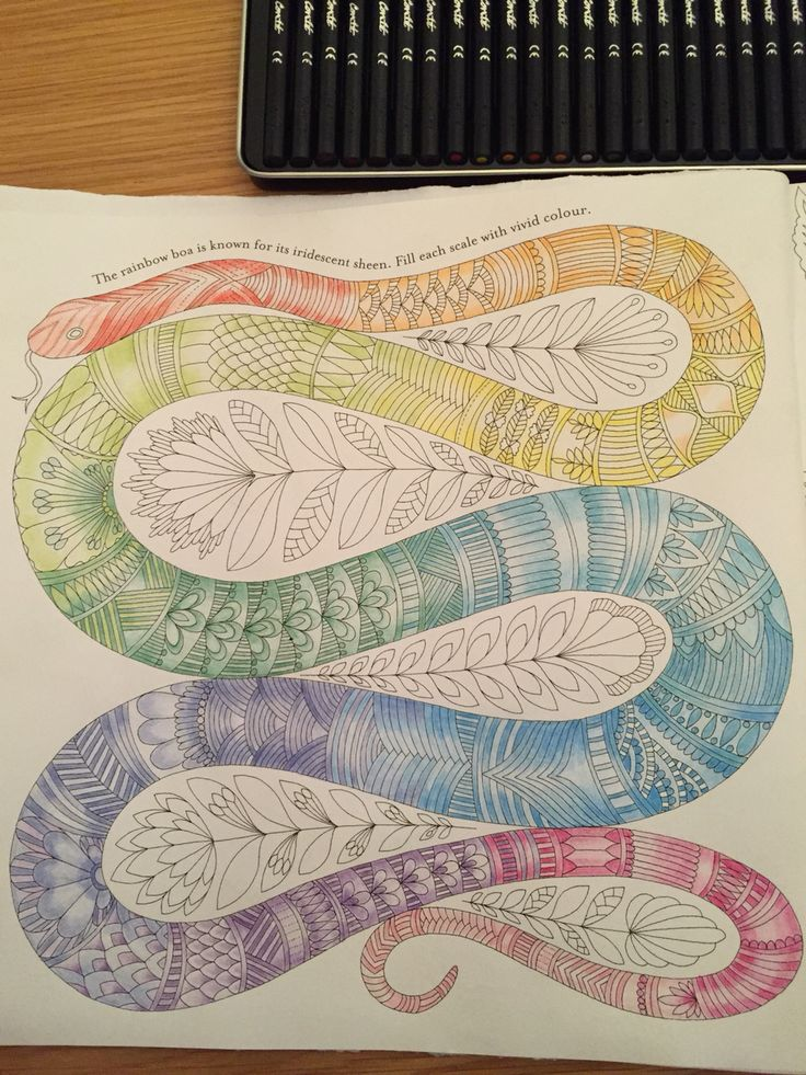 Completed Snake Colouring Millie Marotta Tropical Wonderland Book For Adults