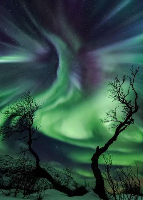 Nordic Aurora