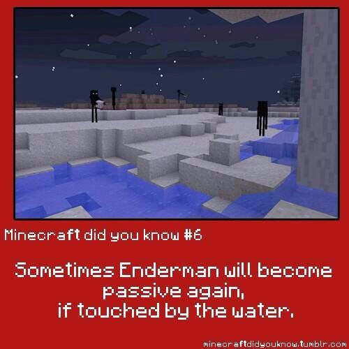 Minecraft did you know #6