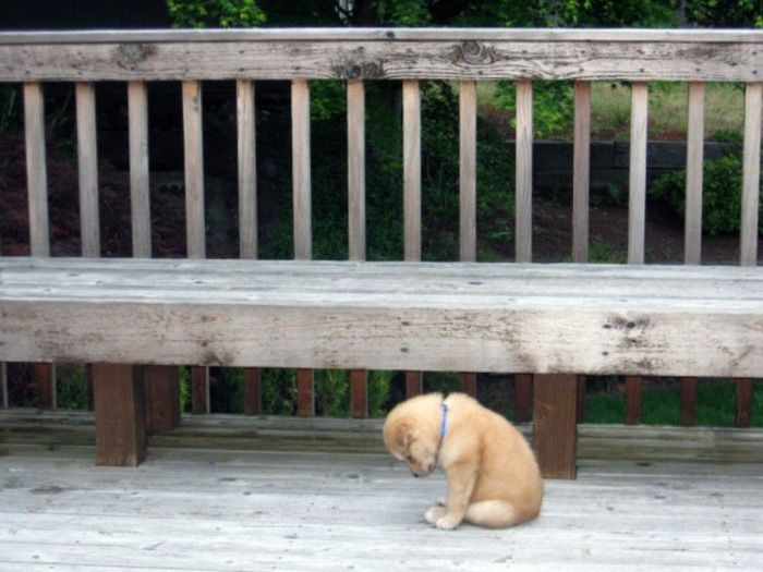I am just so bummed out that it is Monday already!