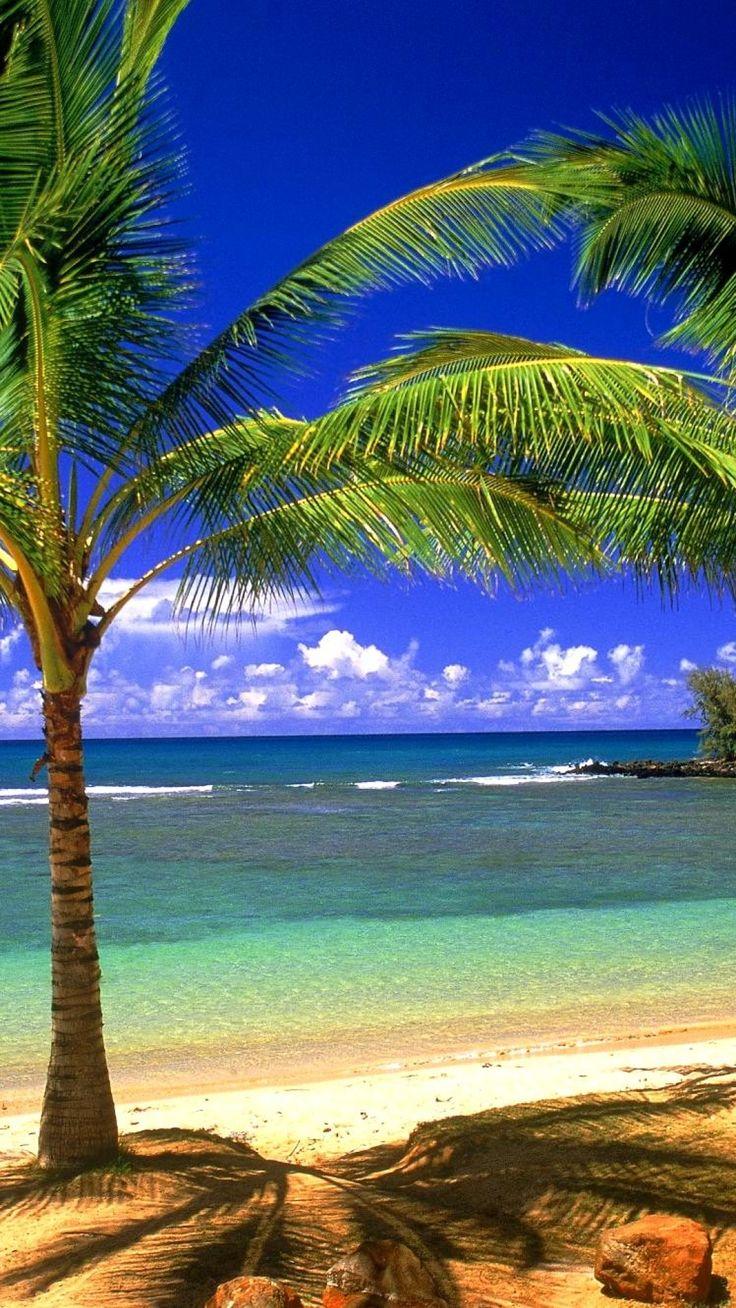 Beach HD Desktop Wallpapers for Widescreen