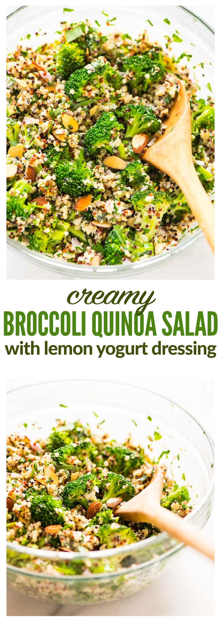 Creamy Broccoli Quinoa Salad with Greek Yogurt Lemon Dressing. Healthy and protein packed! Perfect for make ahead meals, light lunches, and potluck side dishes. {gluten free} Recipe at wellplated.com | @wellplated (Paleo Side Dishes)