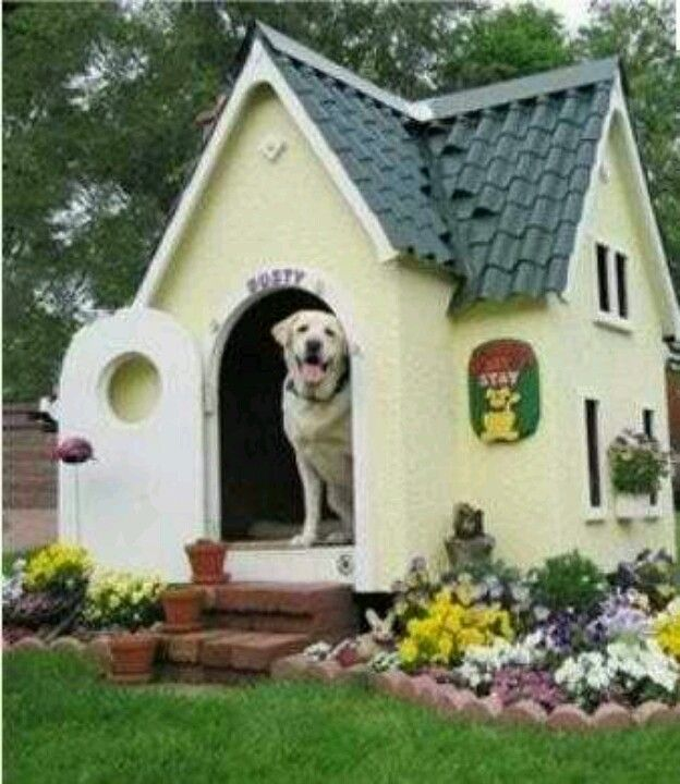 Fancy dog house  Fancy Dog Cribs  Pinterest  Dog Houses