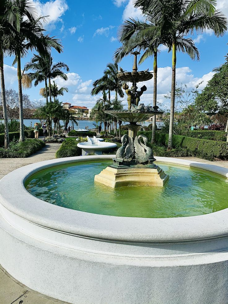 A Tranquil Adventure in 2020 | Travel fun, Lakeland ...