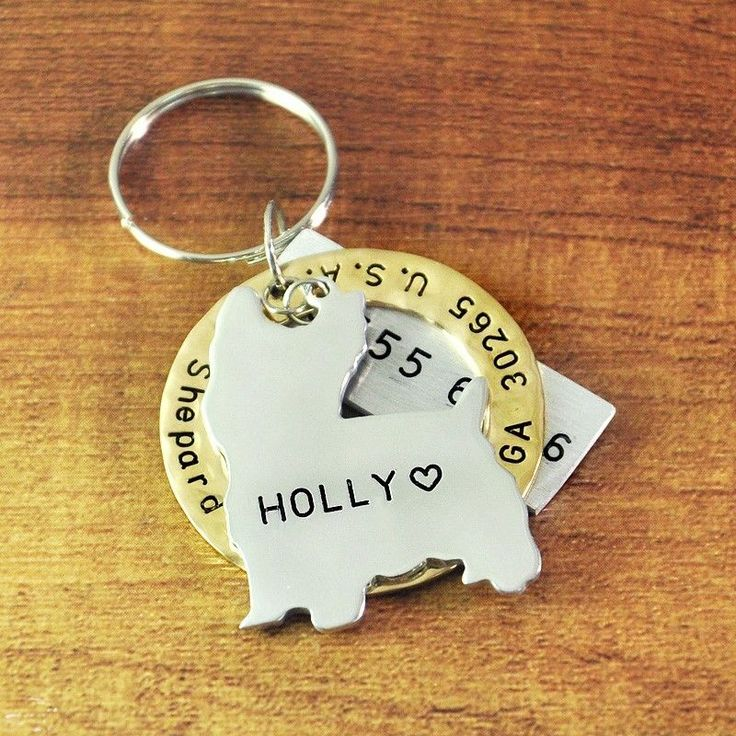 25 Best Ideas About Pet Name Tags On Pinterest Pet Id