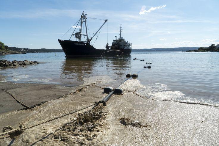https://flic.kr/p/HCaAgB   Påfyll av sand på Oslos strender   Nordstrand sjøbad
